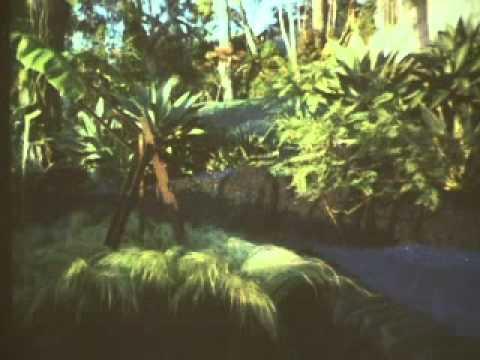 Landscape Design: New Garden Paradise