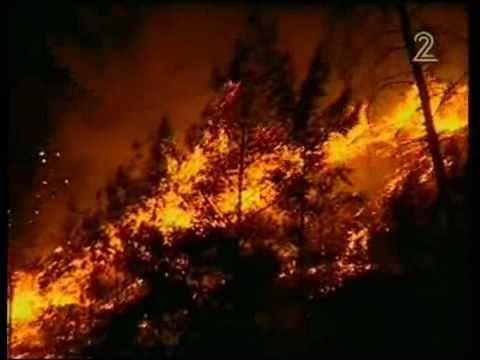 השריפה בכרמל: כך נראים מאמצי הכיבוי ופינוי התושבים
