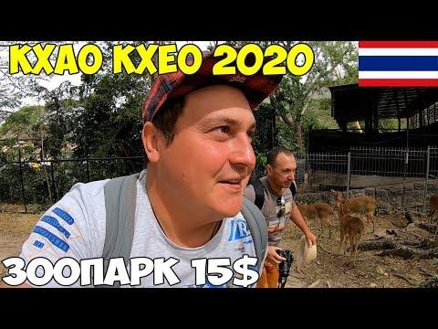 Таиланд Паттайя 2020 Зоопарк Кхао Кхео, самостоятельно или экскурсия, цены