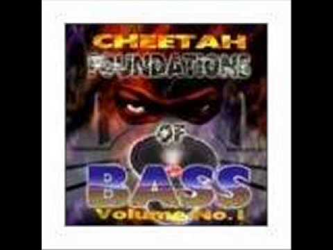 D J  Magic Mike -  Feel The Bass 1
