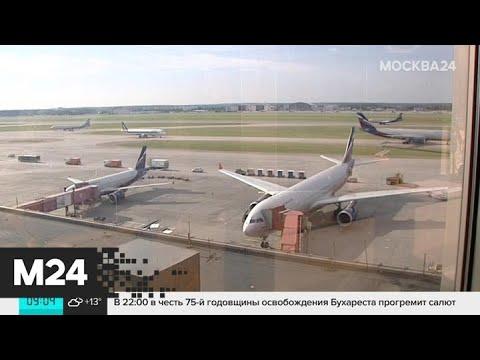 В столичных аэропортах отменили и задержали 130 рейсов - Москва 24