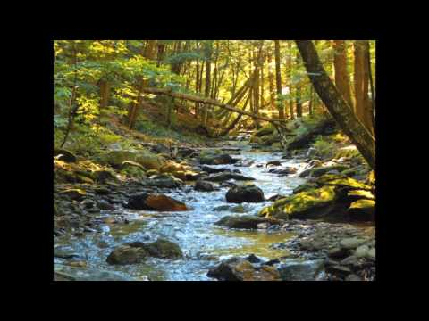 Appalachian Mountain Stream Meditation | Relaxing Stream Sounds for Meditation
