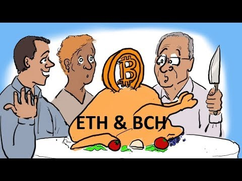 Bitcoin, Ethereum, Bitcon Cash Price and Updates, Happy Thanksgiving!