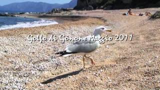 Escursioni www.cardedu-kayak.com