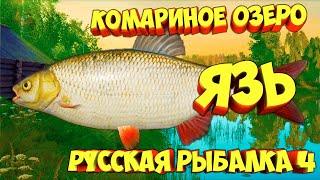 русская рыбалка 4 Язь озеро Комариное рр4 фарм Алексей Майоров russian fishing 4