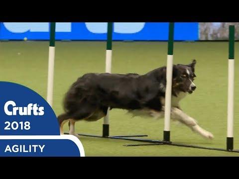 Crufts - International Invitation - Large Jumping Part 2   Crufts 2018