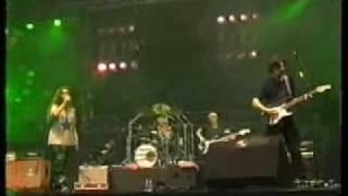ALANIS MORISSETTE - HAND IN MY POCKET (Live Pinkpop :  Hollande 1996)