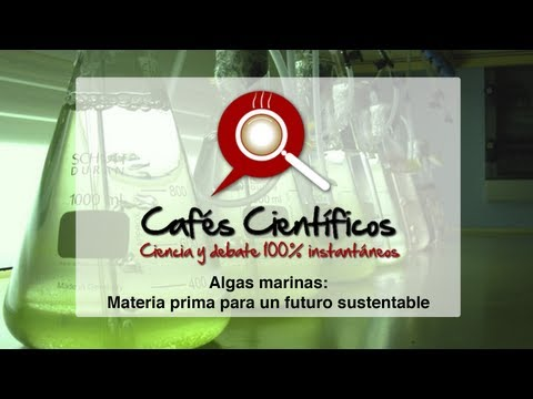 Dr. Cristian Agurto: Algas marinas - materia prima para un futuro sustentable