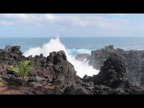 Ile de la Réunion,la marine Langevin,St Joseph (07/2019)