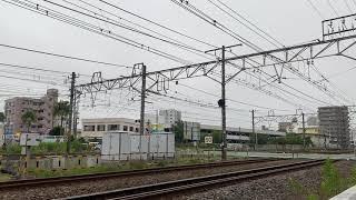 【4連休限定の臨時列車】4+6両の185系10両編成で運行される特急踊り子56号東京行き 2020.7.24