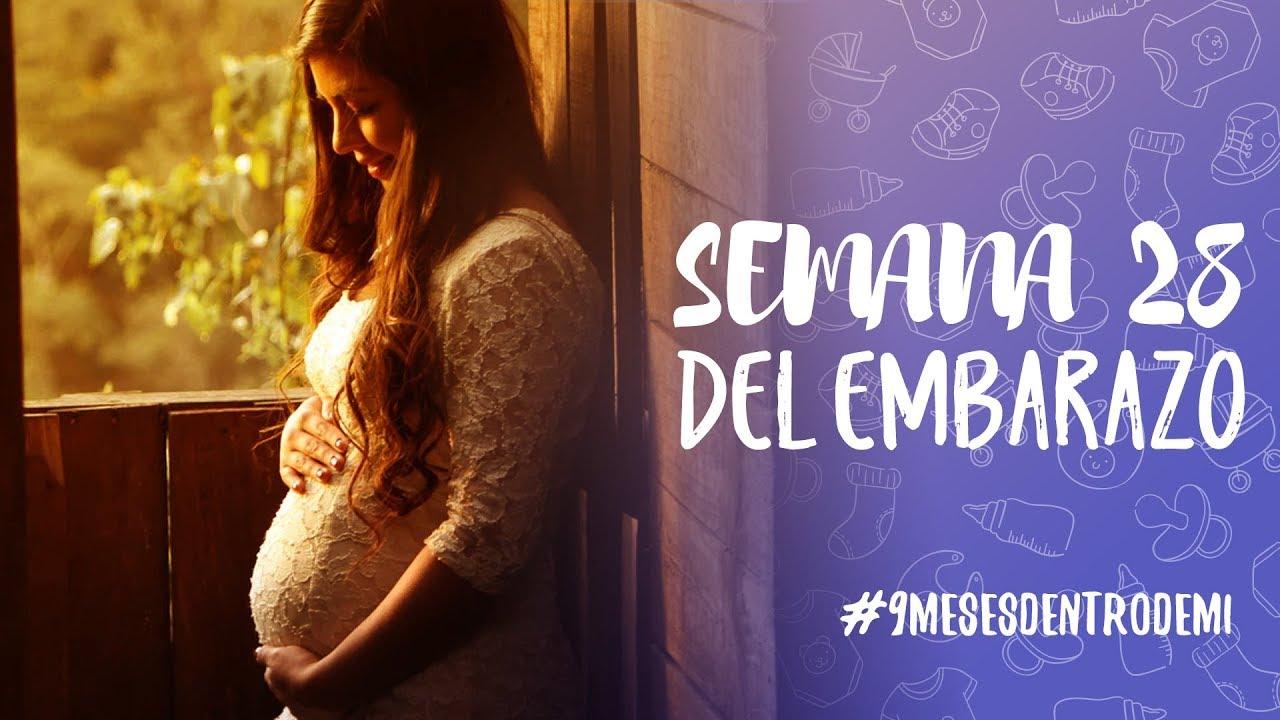 d4fc1e880 Semana 28 de embarazo   9 meses dentro de mi - YouTube