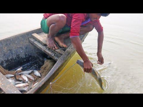 Fishing Videos | Natural Resources Fish | Fish Adventure