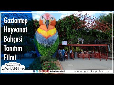 Gaziantep Hayvanat Bahçesi Tanıtım Videosu