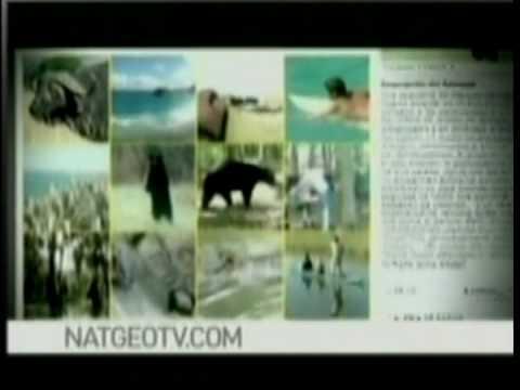 Airbus A380 (Tajemnice powiązań inżynieryjnych) dokument lektor pl 2008 HD from YouTube · Duration:  46 minutes 59 seconds