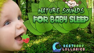 NATURE SONGS TO PUT A BABY TO SLEEP Lyrics Baby Lullaby Music -Soft Lullabies  Baby Sleep Music