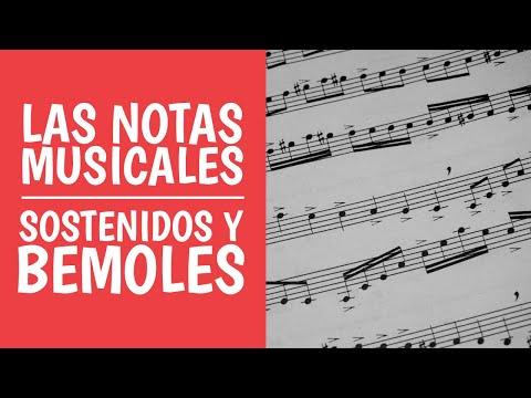 1. Las Notas Musicales: Do, Re, Mi... Sostenidos y Bemoles (Curso Teoría Musical)