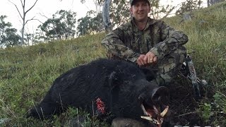 DNA Bowhunter S:1 E:1 'Mountain Thunder' Bowhunting Boars in Australia