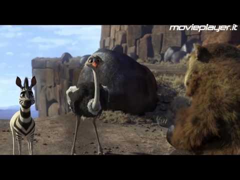 Khumba - Cercasi strisce disperatamente - Video recensioni di Movieplayer.it