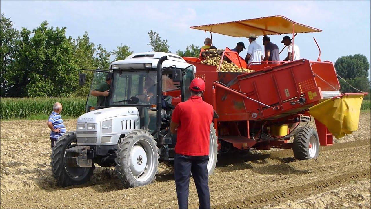 Prova su campo macchine imac per raccolta patate bologna for Raccolta patate