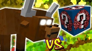SUPER BOIZÃO VS. LUCKY BLOCK NERD (MINECRAFT LUCKY BLOCK CHALLENGE)