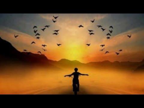 """estudo-de-gosho---28/04/2020---""""a-felicidade-neste-mundo"""""""