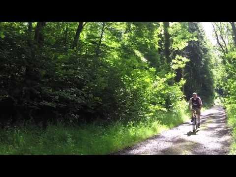 Pivokamp Harz 2014 - Scouting Dr. Ariensgroep Losser