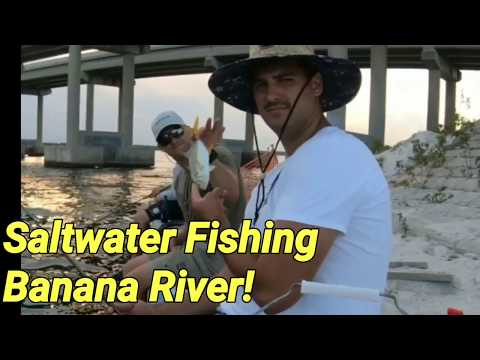 Saltwater Fishing Banana River!