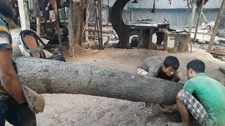 Small Tree but Very Hard To Cut in Wood Cutting Machine in Bangladesh Saw Mill/ Wood Cutting Way