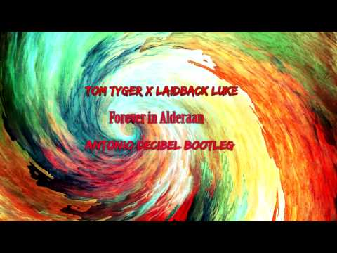 Tom Tyger X Laidback Luke - Forever In...