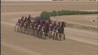 Vidéo de la course PMU PREMI CASTERA-VERDUZAN