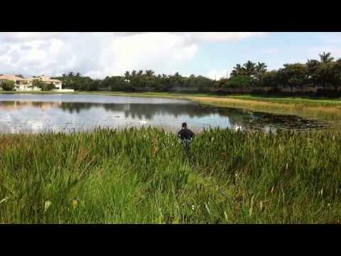 BBTS Black Water Diving, Intake Irrigation Screen Maintenance Part 2