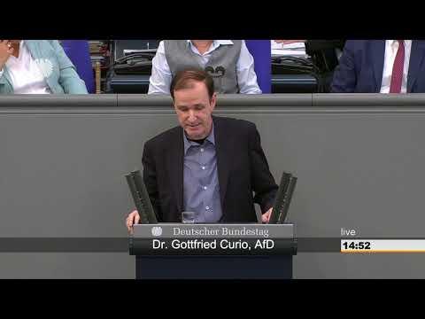 """Gottfried Curio (AfD) """" Was ist das für ein Staat""""."""
