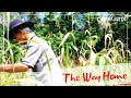 THE WAY HOME|Cinematic| Emotional Piano Instrumental