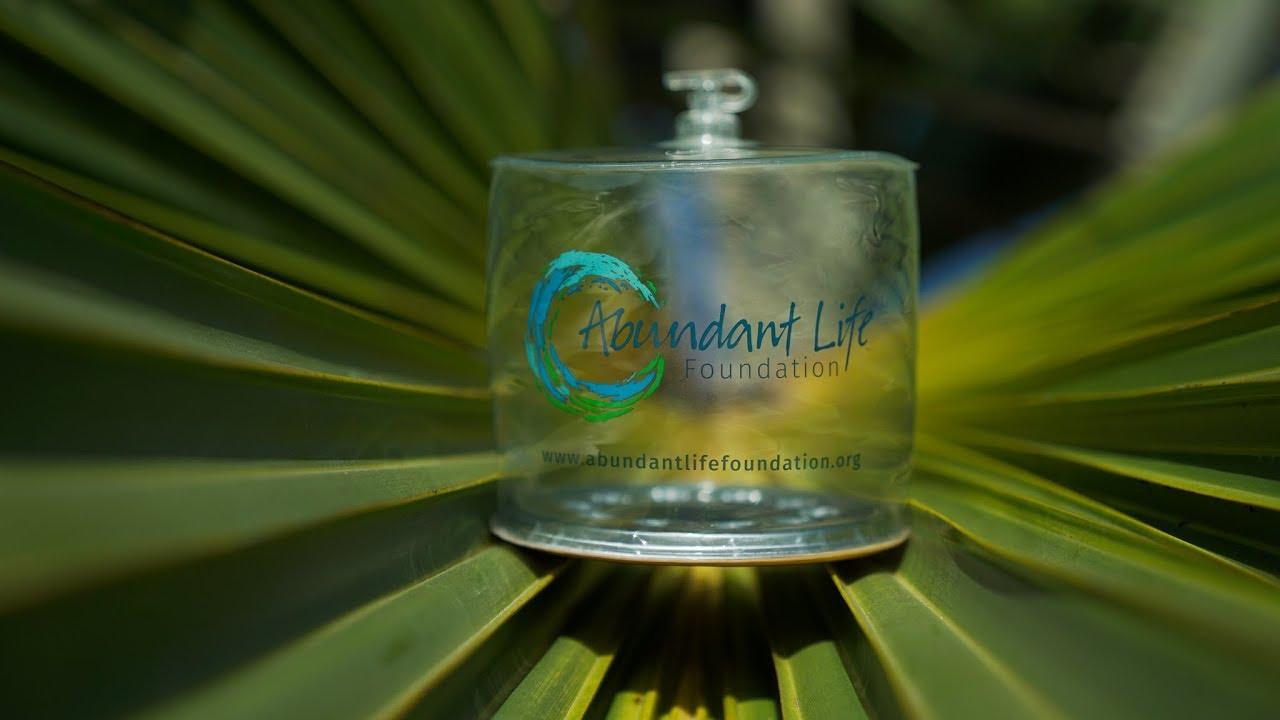 Light Up Life - Roatan, Honduras