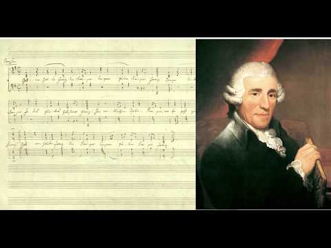 Franz Joseph Haydn - Symphony No. 34 part 1. Beautiful music of the famous composer