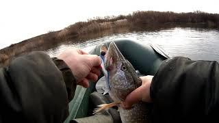 Рыбалка Астана р Нура Отличный клёв