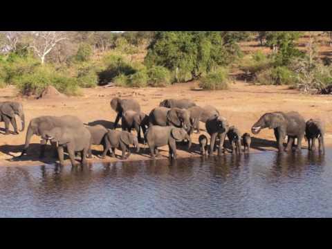 Penn Alumni Travel: Africa