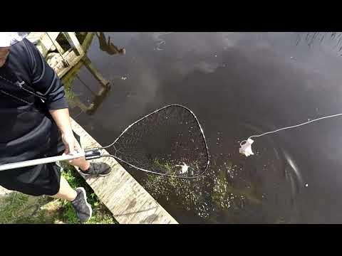 Crabbing At The Outer Banks