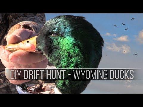 Drift Hunting Ducks In Wyoming - A DIY Public Land Waterfowl Hunt