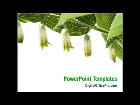 Blooming Flowers Powerpoint Template Backgrounds Digitalofficepro