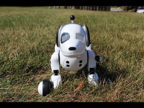 Zoomer The Interactive Robotic Dog Review