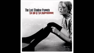 Watch Last Shadow Puppets I Dont Like You Any More video