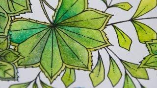 Garden Coloring Book APK Video Tutorial
