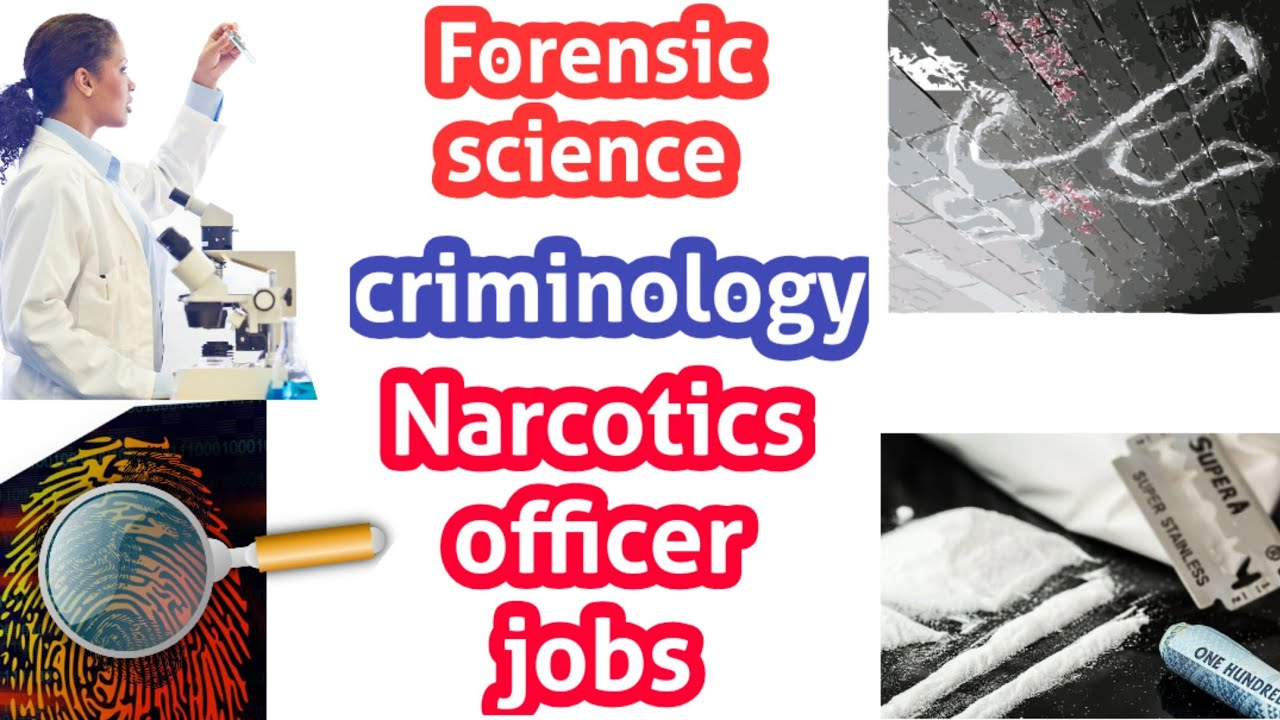 Forensic Science And Criminology Narcotics Officer Jobs Tamil Youtube
