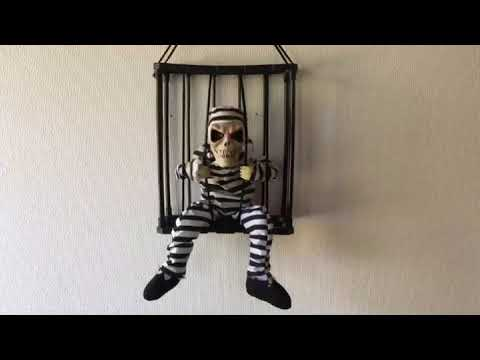 Skelet I Bur Halloween Dekoration Youtube