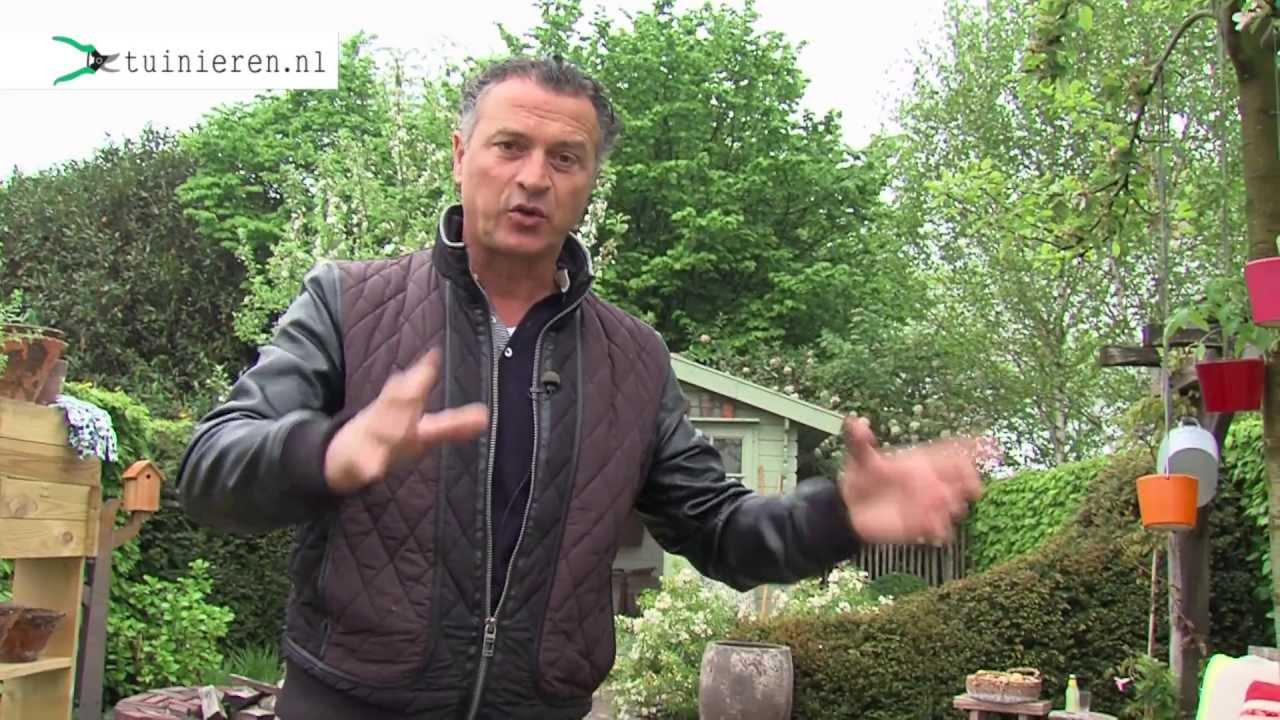 Zen Tuin Aanleggen : Kleine tuin ontwerpen en aanleggen tuinieren.nl youtube