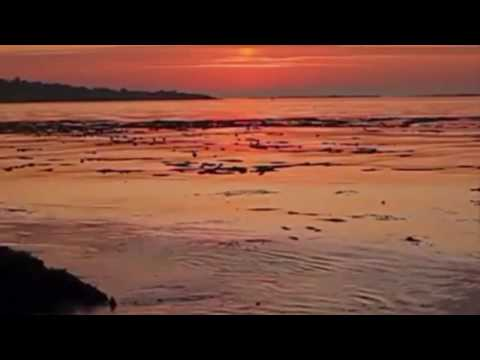 Chiti Pag Babey Di Noo Daag Nai Lagai De - By Premi Johal