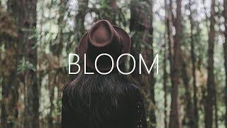 Dabin - Bloom ft. Dia Frampton (Lyrics) Nurko Remix