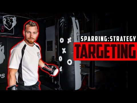 Sparring Strategy Boxing Targeting Reaction Time Youtube