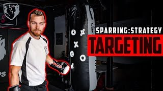 Sparring Strategy: Boxing Targeting & Reaction Time